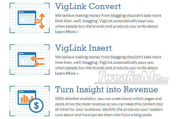 VigiLink Products