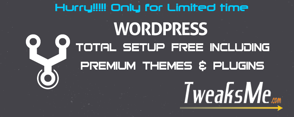 WordPress Setup Service TweaksMe